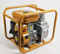 Water Pump-  GAS, 4 HP,  2 inch discharge